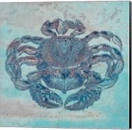 Saltwater Crab Fine-Art Print