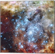 Merging Clusters in 30 Doradus (Non-annotated) Fine-Art Print