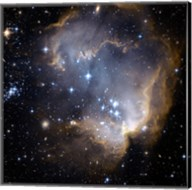 Hubble Observes Infant Stars in Nearby Galaxy Fine-Art Print