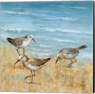 Sandpipers II Fine-Art Print