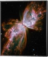 The Butterfly Nebula Fine-Art Print