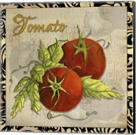 Vegetables 1 Tomatoes Fine-Art Print