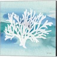 Sea Life Coral II Fine-Art Print