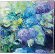 Bright Hydrangea III Fine-Art Print