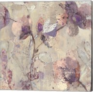 Silver Delight I Fine-Art Print