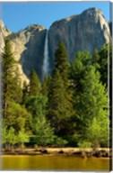 Merced River, Yosemite NP, California Fine-Art Print