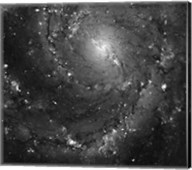 Hubble Space Telescope Imaging of Hot Gas and Star Birth in M101 Fine-Art Print