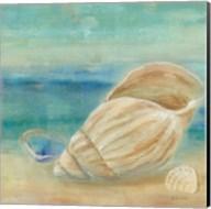 Horizon Shells II Fine-Art Print