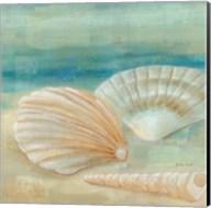 Horizon Shells IV Fine-Art Print