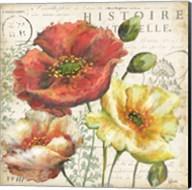 Spice Poppies Histoire Naturelle I Fine-Art Print