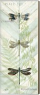 Dragonfly Botanical Panels II Fine-Art Print