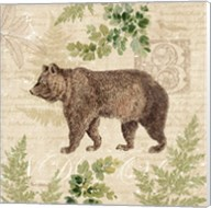 Woodland Trail II (Bear) Fine-Art Print