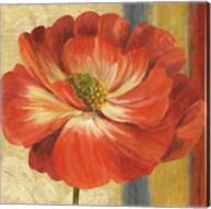 Poppy Tapestry Stripes II Fine-Art Print