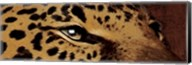 Leopard Eyes Fine-Art Print