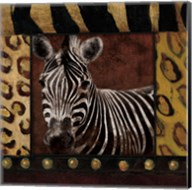 Zebra With Border Fine-Art Print