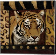 Tiger Bordered Fine-Art Print