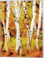Glowing Forrest Fine-Art Print