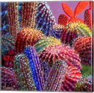 Barrel Cactus 4 Fine-Art Print