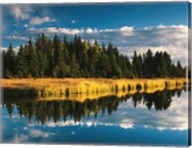 Trees reflecting in Snake River, Grand Teton National Park, Wyoming Fine-Art Print