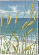 Summer Breeze II Fine-Art Print