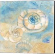 Watercolor Shells I Fine-Art Print