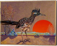 Roadrunner in the Evening Fine-Art Print