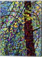 Pine Sprites Fine-Art Print