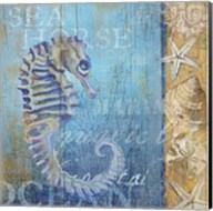 Sea Horse and Sea Fine-Art Print