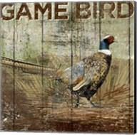 Open Season Pheasant Fine-Art Print