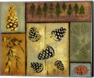Pines and Oak I Fine-Art Print