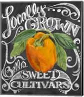 Chalkboard Pepper Fine-Art Print