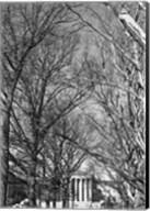 Philadelphia Museum (Trees) Fine-Art Print