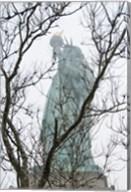 Lady Liberty Fine-Art Print