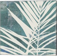 Fronds on Azure Fine-Art Print