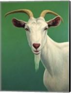 Portrait of A Goat Fine-Art Print