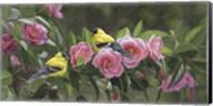 Garden Gems Fine-Art Print