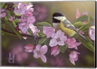 Pretty in Pink - Chickadee Fine-Art Print