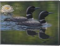 Loon Pair Fine-Art Print