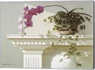 Orchid On Mantle Fine-Art Print