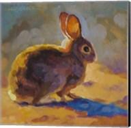 Sunny Bunny Fine-Art Print