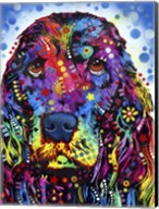 Cocker Spaniel 2 Fine-Art Print