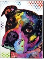 Young Boxer Fine-Art Print
