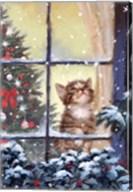 Kitten And Snow Fine-Art Print