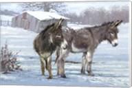 Donkey Pair Fine-Art Print