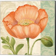 Pastel Poppies II Fine-Art Print