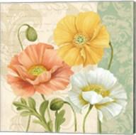 Pastel Poppies Multi II Fine-Art Print