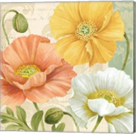 Pastel Poppies Multi II Fine-Art Print