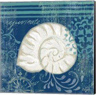 Navy Blue Spa Shells I Fine-Art Print