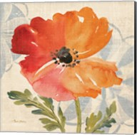 Watercolor Poppies V Fine-Art Print