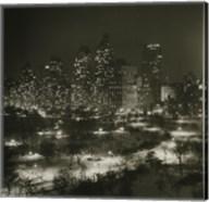 Winter Central Park Fine-Art Print